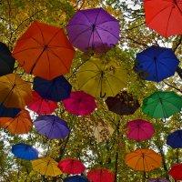 Нашествие зонтиков :: Татьяна Кретова