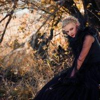 Злая королева :: Дмитрий Городков