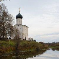 Покрова на Нерли :: Иван Щербина