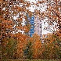 В городе осень :: Татьяна Ломтева