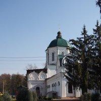 Спасо-Преображенский Толшевский женский монастырь. :: Игорь Ковалев