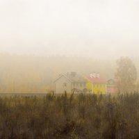 Осенний туман. :: Галина