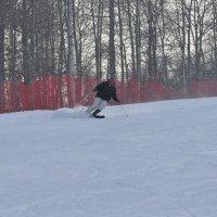 лыжник в движении :: Гоген Егорыч Лесков