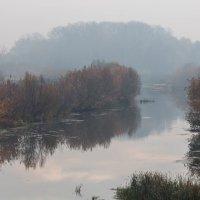Осенний туман :: Мария Зайцева