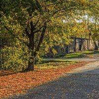 Осень в гаражах :: Константин Бобинский