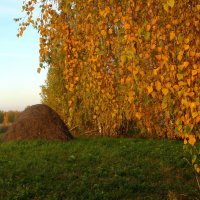 Осенний занавес. :: nadyasilyuk Вознюк