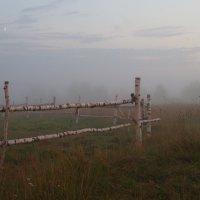 В тумане :: Елена Артамонова