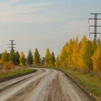 осень :: андрей Язовских