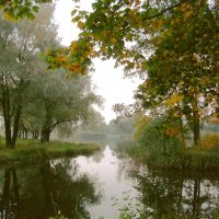 Осенний вечер, туман над водой... :: VasiLina *