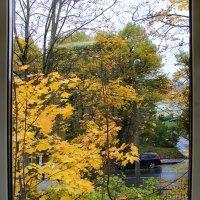 А за окошком осень улыбается.... :: Tatiana Markova