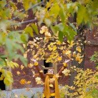 Золотая осень :: Алексей Мартынов