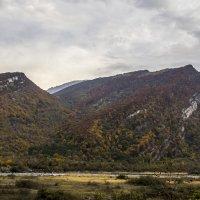 Осень не за горами! :: Avak. A
