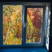 Осень за окном :: Екатерина Исаенко