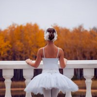 Лебединое озеро :: Galina Zabruskova