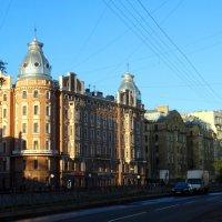 Набережная реки Карповки :: Владимир Гилясев