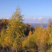 Прощальная краса :: Ната Волга