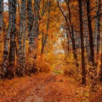 золотая осень... :: Татьяна Бральнина