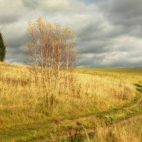 Осенний пейзаж :: Валерий Талашов