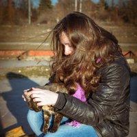 кошка :: Владимир Глазырин