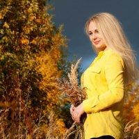 осень... :: photographer Anna Voron