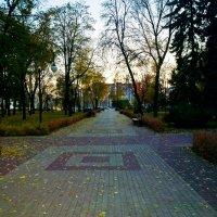 Кольцовский сквер, поздний вечер 15 октября 2014 г. :: Владимир Нев