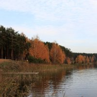 На озере :: OlegVS S