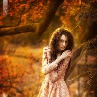 осень :: Alex DO