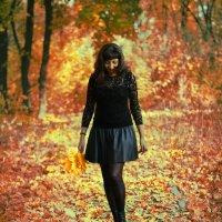 Октябрь....шла Золотая Осень :: Ирина Малинина