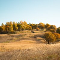 Моя осень :: Roman Korovkin