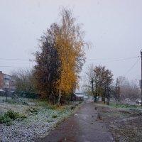 Мокрый снег :: Алексей Golovchenko