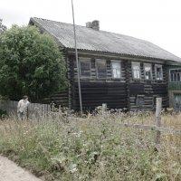 Дом моего прадеда :: Svetlana27