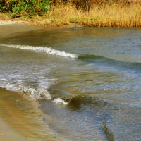 Речная волна... :: Тамара (st.tamara)