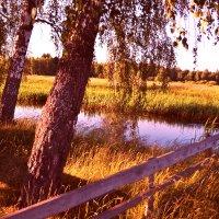 Осень-прекрасная пора) :: Светлана