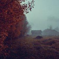 Туман в сетябре... :: Федор Кованский