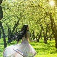 По дороге цветов :: Фотохудожник Наталья Смирнова