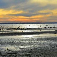 Закат на Балтике :: Николай Танаев