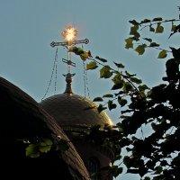 луч солнца золотой... :: Александр Корчемный