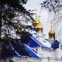Среднеуральский монастырь :: Дмитрий Часовитин