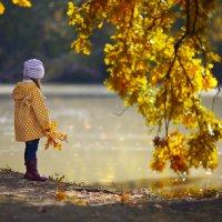 Осенняя пора очей очарованье... :: Наталья Дари