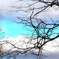 Разноцветное небо... :: Фотогруппа Весна-Вера,Саша,Натан
