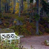 Тихая осень :: Татьяна Петранова