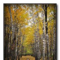 Осень. :: Виталий Виницкий