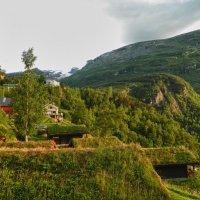Редкое норвежское солнце :: Светлана Игнатьева