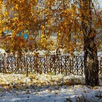 Первый снег :: Светлана Медведева