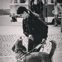 Собака поводырь и её хозяйка :: Ксения Базарова