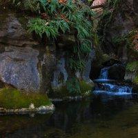 Водопад Спокойный :: татьяна