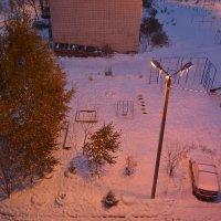 утро, наш двор 18.10.2014 :: Светлана