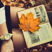 Чтение на природе :: Михаил Макарик