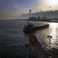 Как провожают пароходы? :: Марина