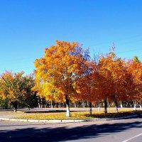 Осень в городе... :: Сергей Петров